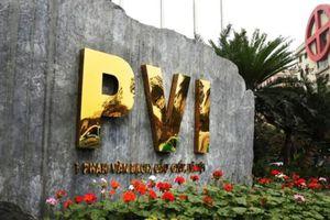 Năm 2018, Bảo hiểm PVI đạt doanh thu 8.300 tỷ đồng