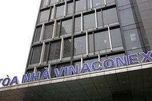 Lộ diện chủ nhân 8x của doanh nghiệp vừa thực hiện thương vụ 'khủng' 840 tỷ tại Vinaconex