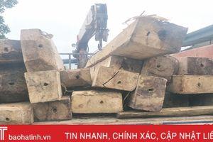 Kiểm lâm Hương Khê thu giữ 16 bê gỗ khai thác trái phép