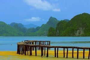 Cận cảnh cầu gỗ vươn biển dài nhất Quảng Ninh khiến nhiều teen phát hờn
