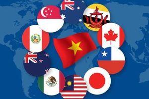 CPTPP có hiệu lực: Cơ hội và thách thức cho doanh nghiệp Việt