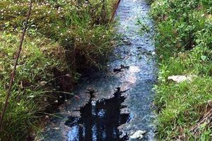Những doanh nghiệp bị phạt tiền tỷ vì 'bức tử' môi trường sống