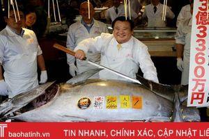 Cận cảnh con cá ngừ có giá kỷ lục hơn 250 triệu đồng/kg
