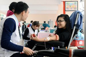 Kỳ vọng mới ở 'Năm thanh niên tình nguyện'