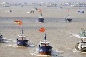 Quân đội Mỹ cảnh báo tàu cá Trung Quốc 'bắt nạt, đe dọa gây chiến'