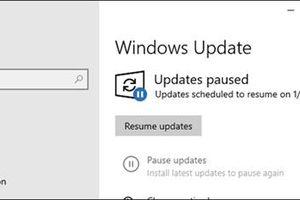 Windows 10 Home sẽ cho phép tạm dừng việc cập nhật