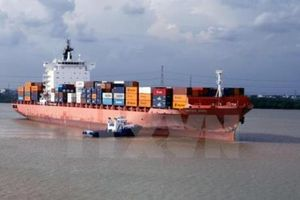 Vận chuyển container đường biển của Việt Nam đang có tiềm năng lớn