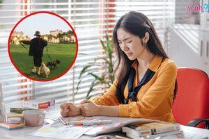 Hòa Minzy suy sụp tinh thần, dắt chó đi dạo ở công viên giữa tâm bão chỉ trích