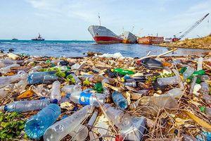 Khuyến khích doanh nghiệp tái chế rác thải nhựa
