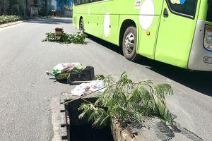 Tin tức 7/1: Hố ga 'bẫy người' ở cửa ngõ sân bay Tân Sơn Nhất