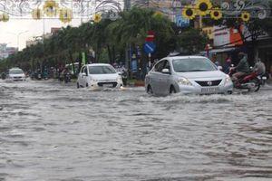 Cà Mau: Hàng chục ha dưa hấu Tết bị nhấn chìm do ảnh hưởng của bão số 1