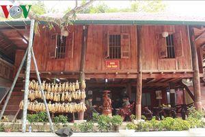 Rừng Vàng - địa điểm tuyệt vời cho du khách đến Sơn La