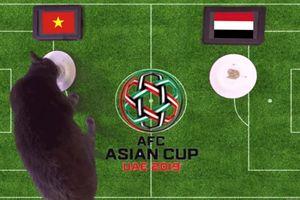 Mèo tiên tri Cass chọn Việt Nam thắng Iraq