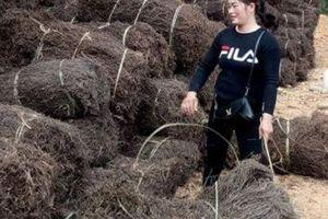 Trung Quốc mở 'cửa' nhập khẩu tạm thời Thạch đen Tràng Định