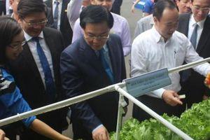 Phó Thủ tướng Vương Đình Huệ 'nếm thử' các sản phẩm OCOP
