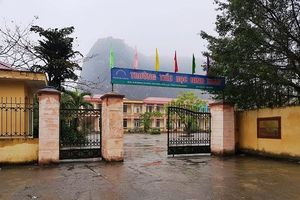 12 học sinh tiểu học bị chó cảnh cắn ngay trong sân trường