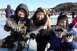 Độc đáo lễ hội câu cá trên băng trong mùa đông lạnh giá ở Hàn Quốc