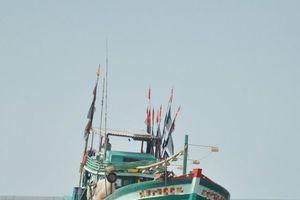 Cà Mau: Xác minh 3 tàu cá cùng 21 ngư dân bị bắt khi đang chạy bão số 1