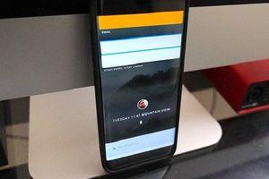 Google bí mật phát triển hệ điều hành thay thế Android?