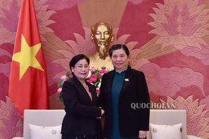 Phó Chủ tịch Thường trực Quốc hội Tòng Thị Phóng tiếp Chủ tịch Kiểm toán Nhà nước Lào Viengthong Siphandone