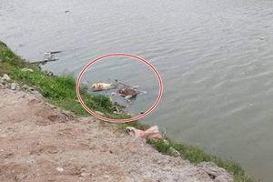 Điều tra vụ thi thể bị trói 2 tay, đầu bịt túi nylon phân hủy trên sông