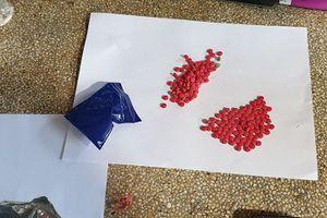 Thanh Hóa: CSGT chặn đứng 2 đối tượng đi ô tô vận chuyển số lượng lớn ma túy