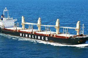 Vinalines tham vọng lợi nhuận trước thuế hơn 710 tỷ đồng năm 2019