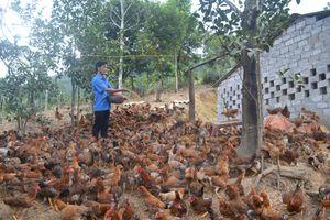 Động lực cho các hộ dân thoát nghèo bền vững