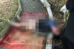 Cô gái chết lõa thể ở công viên từng có 2 tiền án về tội ma túy