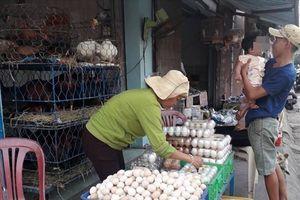 Gà, vịt bày bán trái phép, cúm A/H5N1 khó kiểm soát