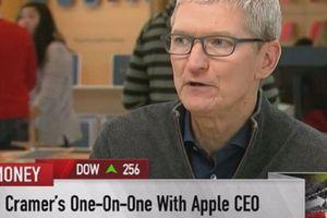 CEO Apple – Tim Cook nói gì giữa 'tâm bão'?