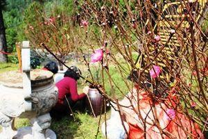 Khu mộ Đại tướng Võ Nguyên Giáp được giao cho gia đình quản lý