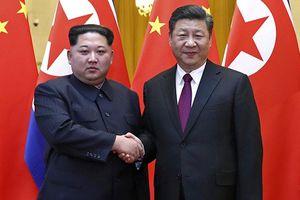 Ông Tập Cận Bình hy vọng điều gì khi đón Lãnh đạo Kim Jong-un tại Trung Quốc?