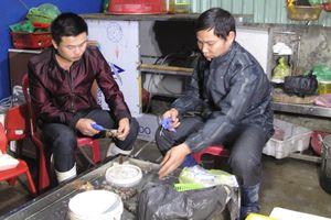 Hải Phòng bắt quả tang vụ bơm bột thạch agar vào tôm để bán kiếm lời