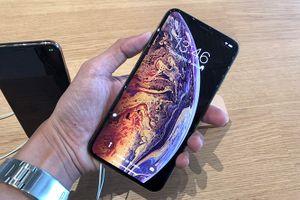Apple hạ giá bán iPhone 8, Xr và Xs tại Trung Quốc