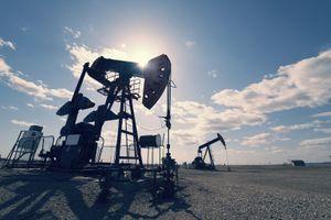 ONGC Videsh có phát hiện dầu trên đất liền tại Lô CPO-5, Colombia