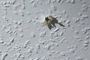 Kỹ sư khoan lỗ bí mật trên trần nhà bạn gái cũ để theo dõi