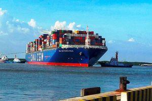 Cảng Cái Mép đón siêu tàu container khai trương tuyến dịch vụ hàng tuần