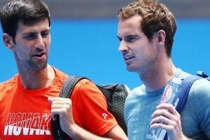 Trước thềm Australian Open, Murray thua sấp mặt dưới tay Djokovic