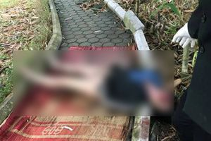 Vụ thi thể người phụ nữ tại vườn hoa: Nạn nhân từng có tiền án về ma túy