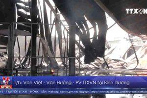 Bình Dương kịp thời khống chế vụ cháy lớn ở thị xã Tân Uyên
