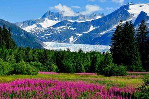 6 điều có thể bạn chưa biết về Alaska