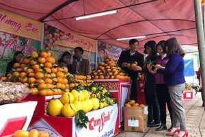 Hội chợ cam sành Hàm Yên năm 2019