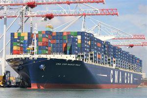 Nhộn nhịp tàu lớn 'ăn hàng' tại các cảng biển dịp đầu năm