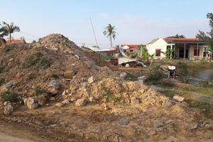 Chính quyền 'lấy' đất sản xuất của người dân để cho thuê: UBND huyện Quỳnh Lưu nói gì?