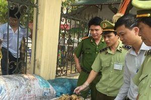 Lào Cai: Thu giữ 700kg thực phẩm bẩn đang trong quá trình phân hủy