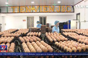 Công bố 13 sản phẩm nông nghiệp chủ lực Quốc gia