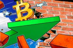 Giá tiền ảo hôm nay (11/1): Chuyên gia Blockchain Bitcoin nói 'đây là thời điểm thích hợp mua vào'