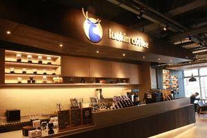 Luckin - startup Trung Quốc tham vọng đánh bại Starbucks của Mỹ đã 'hóa rồng' ra sao?
