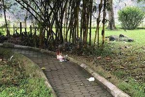 Người bán nước trà kể lại lần gặp người phụ nữ chết bí ẩn trong vườn hoa